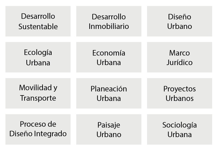 Maestría: Areas de estudio